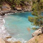 Foto di Iberostar Bahia de Palma
