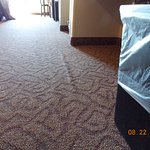 Bubbling carpet in bedroom
