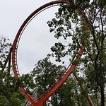 A loop on the Thunderbird.