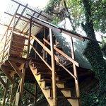 Entrada a una de las Canopy Cabin