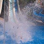 Club Paradiso Resort Foto