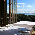 The view from the Mudbrick restaurant where we stopped for lunch.