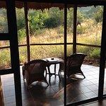 Foto de Ivory Tree Game Lodge