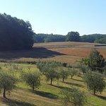 Photo of Agriturismo Natura e Salute