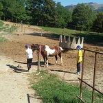 Photo de Agriturismo Pian d'Isola