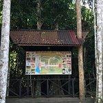 Photo de Abai Jungle Lodge