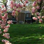 Osler House Foto