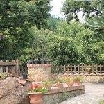 Photo of Il Borgo di San Valentino