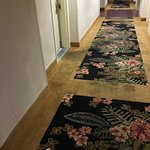Hallway carpet - 2nd floor