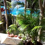 Pool in tranquil tropical garden