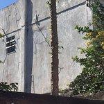 Fachada lembra um prédio mal assombrado.