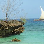 Chumbe Island Coral Park Foto