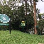 Photo de Dubare Elephant Camp