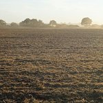 Ausblick auf Felder