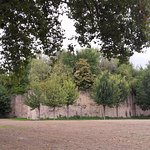 la butte arborée, lieu emblématique du parc