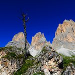 Photo de Rifugio Toni Demetz Hutte