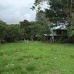 Rio Drake Farm Foto