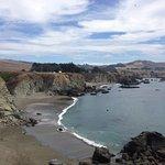 Foto de Sonoma Coast State Beach