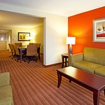 Photo de Holiday Inn Hotel & Suites Orange Park