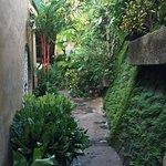 Foto de Villa Mango