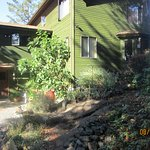 Arbutus Hill Bed and Breakfast Photo