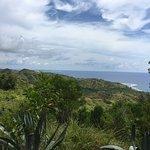 Cetti Bay Overlook
