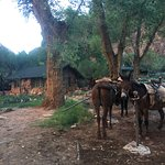 Foto de Phantom Ranch