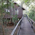Photo of Gooderson Bushlands Game Lodge