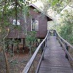 Foto de Gooderson Bushlands Game Lodge