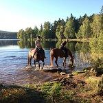 kratka pauza na obcerstenie koni pri jazere
