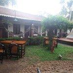 Foto di Avocado Garden Restaurant