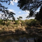 Foto de Fig Tree Camp
