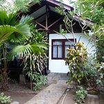 bungalow lekker in het groen