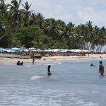 Playa Esmeralda Beach Resort Foto