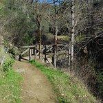 The bridge near at French Corral  Creek along Buttermilk Bend Trail