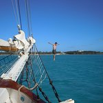 Liberty Fleet of Tall Ships Photo