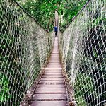 Tree canopy walk (excursion at the Inkaterra Reserva Amazonica)