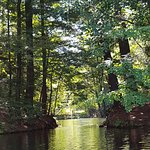 Lakeside Cottage Rentals