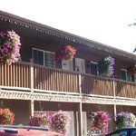 Beautiful hanging baskets outside the inn