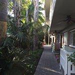 Photo of Ocean Palms Beach Resort