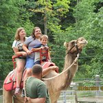 Camel rides were only $5- and $5 for a pic. I thought that was reasonable