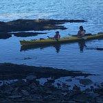 Foto de Arbutus Point Oceanfront Bed and Breakfast