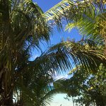 Tikehau Ninamu Resort Foto