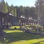 Hotel Cottages