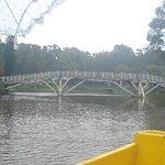 Ward's Lake Foto