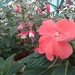 20151011_110354_large.jpg