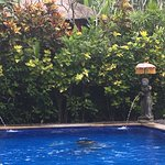 Photo de Tropical Bali Hotel