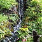 Cascade du Jardin de la Jaysinia