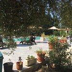Foto de Frosini Gardens