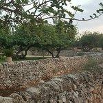 Photo of Masseria Ciancio